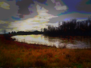 Willamette River - Irish Bend